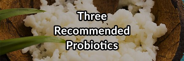 My Three Recommended Probiotic Strains