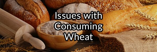What is Gluten? What Are The Issues With Consuming Wheat?