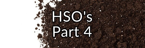 HSO's Part 4 - What About Saccharomyces boulardii?