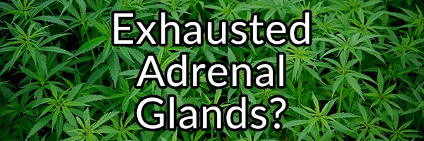 Three Substances That May Be Making Your Adrenal Glands Exhausted