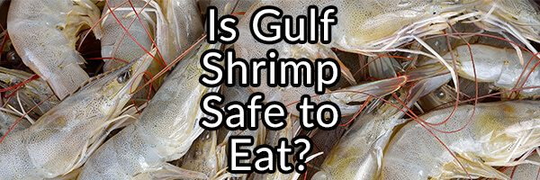 Is Gulf of Mexico Shrimp Safe to Eat after the BP Spill?