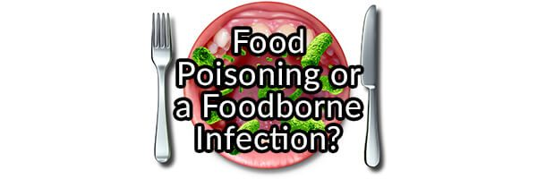 Was It Food Poisoning or a Foodborne Infection or How I Spent Days on the Toliet and Learned How to Love the Bowl