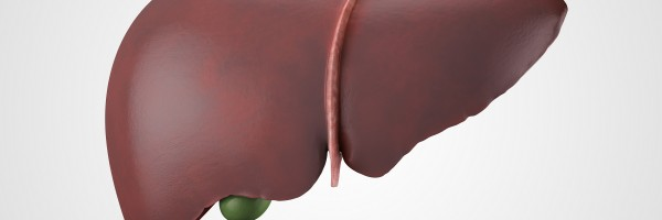 Endotoxin: Part 2 - How Opportunistic Bacteria Damage Your Liver