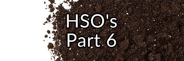 HSO's Part 6 - What About Enterococcus faecalis?