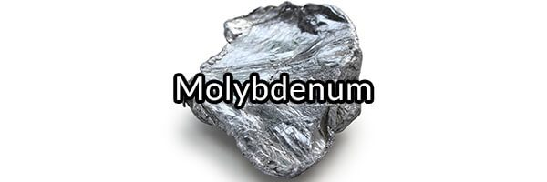 Molybdenum: The Important Mineral That Nutritionists Forgot