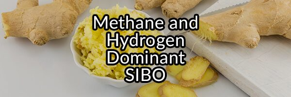 SIBO: Hydrogen, Hydrogen Sulfide, or Methane, What Is the Difference?
