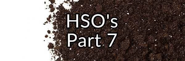 HSO's Part 7 - Why I Do Not Recommend MegaSporeBiotic or My Issues With Bacillus licheniformis