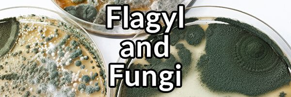Flagyl and Fungi: A Bad Combination?