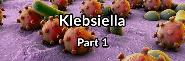 Klebsiella: The Cause of R A and Ankylosing Spondylitis, Part 1